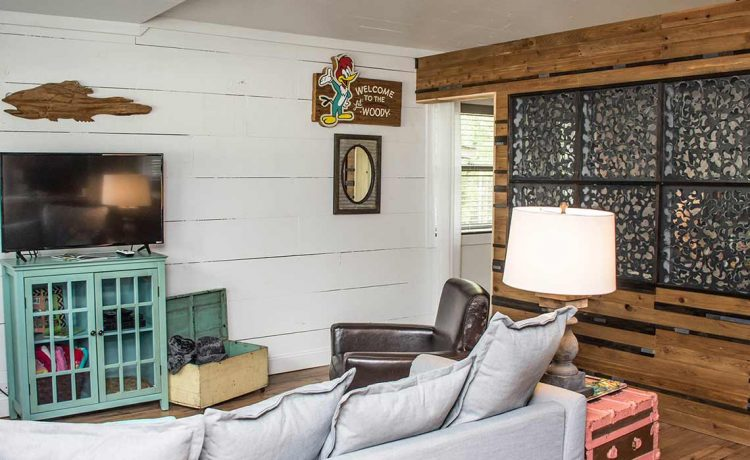 Lil Woody living area and sleeper sofa