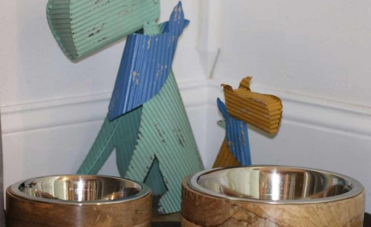 Lil Woody pet station and food bowls